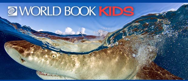 World Book Encyclopedia Columbus Metropolitan Library