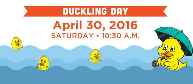 Duckling Day